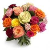 Vrolijke rozenmix