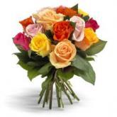 Vrolijke gemengde rozen